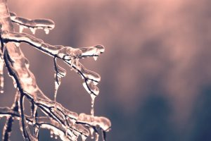 thermoforming company discusses texas ice storm